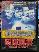 挖寶二手片-P07-320-正版DVD-電影【叛獄風雲】-