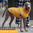 寵物服 寵物狗狗衣服裝加厚威瑪杜賓德牧中型大型犬狗款 快速出貨