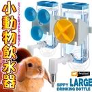 📣此商品48小時內快速出貨🚀》義大利ferplast富寶》寵物兔專用飲水器-L