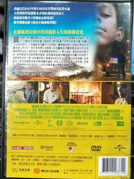挖寶二手片-Z20-020-正版DVD-電影【垃圾男孩/Trash】-為愛朗讀導演*藥命關係-魯妮瑪拉(直購價)