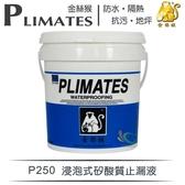 【漆寶】金絲猴│浸泡式矽酸質止漏液P-250(1加侖裝)