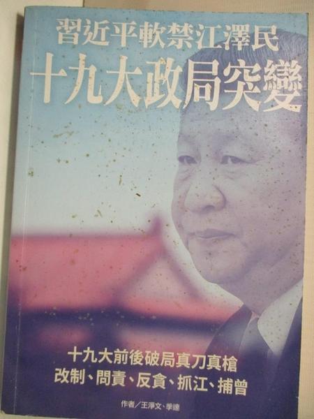 【書寶二手書T4/政治_GBN】十九大政局突變_王淨文, 季遠
