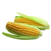 【陽光農業】國產玉米2入(約450g/盒)