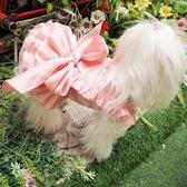 迷死人的花苞禮服 很難做 寵物貴賓犬狗狗衣服泰迪裙子   蓓娜衣都