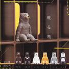 全套6款【日本正版】坐姿熊 扭蛋 轉蛋 ...
