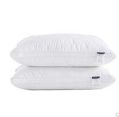立體螺旋纖維枕 全棉酒店賓館式居家纖維枕頭枕芯 單只裝 印象家品