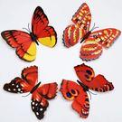 壁貼 大 號15cm 双層蝴蝶3D壁貼 紅色蝴蝶 想購了超級小物