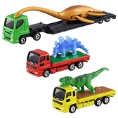 TOMICA 恐龍運輸車套組 共三款 TOYeGO 玩具e哥