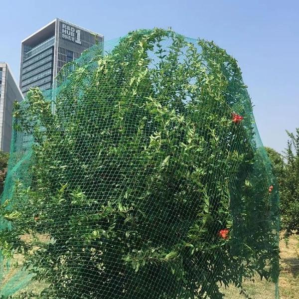 家用戶外果樹防鳥網