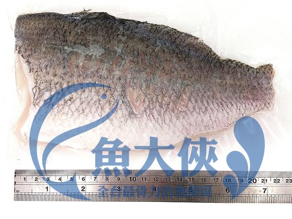 1C2B【魚大俠】FH111鮮美帶皮鱸魚片(200/250規格/片) 清蒸 紅燒 煮湯皆宜 術後進補