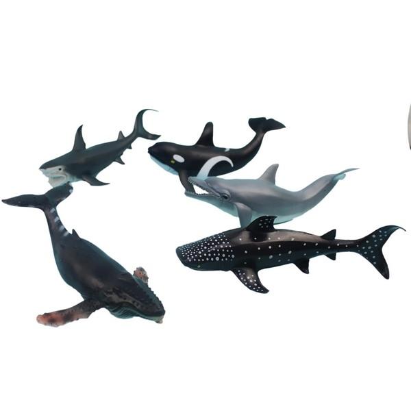 大5隻入 海洋魚模型 HY8-006 海底世界動物模型/一袋入(促350) 軟質空心 仿真魚-生HY8-006(K2395)