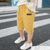 男童夏季短褲薄款五分褲兒童寬鬆休閒褲潮中小童洋氣韓版純棉中褲 夏季新品