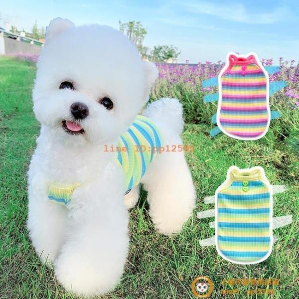 彩虹小吊帶夏季薄款泰迪寵物貓咪雪納瑞博美比熊衣服小型犬小狗狗【小獅子】