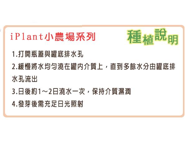 【綠藝004-E00-1家】iPlant易開罐花卉-防蚊樹2入/組(2入優惠價-單罐88元)
