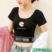 小雛菊t恤 小雛菊短袖t恤女年夏季露肚臍緊身純棉短款上衣印花體恤 麗人印象 免運