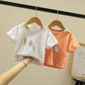 男童T恤 兒童t恤短袖男童夏裝女童體恤小童棉質上衣半袖童裝新款【快速出貨】