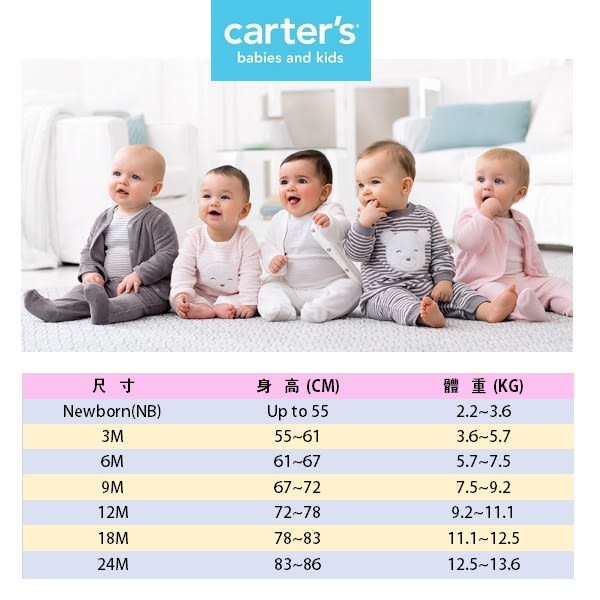 Carter's 連身衣 包屁衣  小精靈咖啡色條紋短袖包屁衣5件組 12M 18M