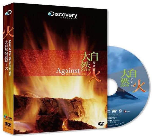 Discovery 大自然發威時火 DVD (購潮8)