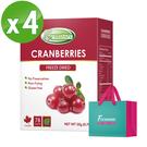 Frenature富紐翠-蔓越莓翠鮮果凍乾 20g (冷凍真空乾燥水果乾) 4盒組(附提袋)