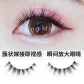 假睫毛自然素顏短款卷翹朵簇眼尾加長嫁接效果濃密仿真網紅S101