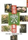 (二手書)台灣藥草集粹