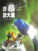 【書寶二手書T8/動植物_JBE】野鳥放大鏡-住行篇_許晉榮