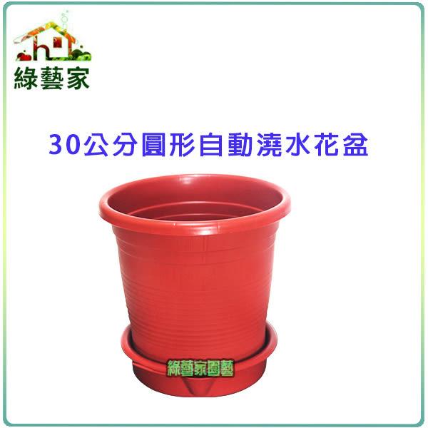 【綠藝家】30公分圓形自動澆水花盆(含底盤)
