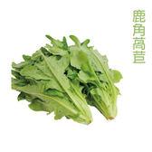 預購 水耕蔬菜-鹿角萵苣(150g)