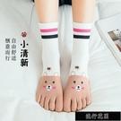 現貨五指襪子女士中筒襪短襪薄款棉襪腳趾襪夏季分趾船襪【全館免運】