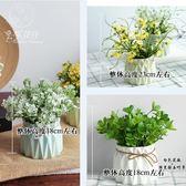 仿真植物小盆栽假花 擺件盆景 裝飾品 花藝擺設