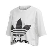 adidas 短袖T恤 Cut-Out Tee 白 黑 女款 休閒 【ACS】 ED4774