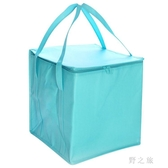野餐袋 蛋糕保溫保冷袋 鋁箔加厚大號便攜式冷凍食品快遞野餐收納包 qz3625【野之旅】