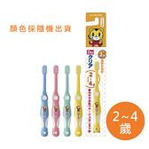 日本 Sunstar 巧虎牙刷/兒童牙刷 (2-4Y) 顏色隨機出貨