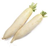 白蘿蔔約500g