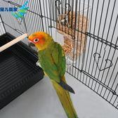 餵食器鸚鵡自動喂食器鳥喂鳥器鳥食杯食槽鸚鵡防撒防濺鳥食盒下料器