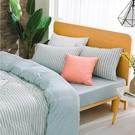 床包薄被套組 雙人特大 天竺棉  水水綠[鴻宇]M2622