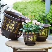 花盆塑料綠植發財樹花盆塑料大花盆送托盤【奇妙商舖】