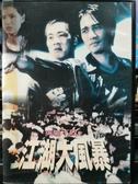 挖寶二手片-D44-正版DVD-華語【英雄不敗之江湖大風暴】-梁朝偉 陳小春 李若彤(直購價)