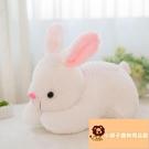 小寵物小兔子公仔小白兔玩偶布娃玩具可愛毛絨【小獅子】
