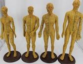 刻字超清晰經絡通男女人體模型人體經絡模型中醫銅人針灸穴位模型