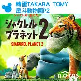 【轉蛋TAKARA TOMY戽斗動物園P2】Norns 日本扭蛋公仔玩具 熊貓之穴 厚到星球 刺蝟兔子老虎 厚道