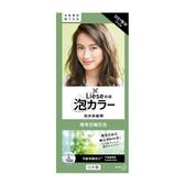 Liese莉婕 泡沫染髮劑-薄荷亞麻灰色 【康是美】