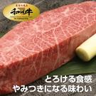 【超值免運】美國日本種和州牛9+厚切凝脂...