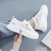 小雛菊小白鞋女2020新款夏季學生爆款厚底透氣網面百搭網鞋潮女鞋【小艾新品】