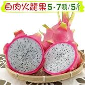 【南紡購物中心】【愛蜜果】白肉火龍果5-7入禮盒 (約5斤/盒)
