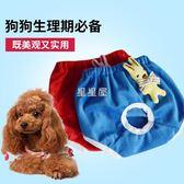 狗狗生理褲泰迪背帶安全褲衛生褲小母狗內褲寵物防騷