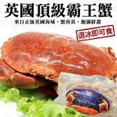 【海肉管家-全省免運】英國頂級爆漿霸王母蟹x2隻(400g~600g±10%/隻)