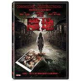 陰地 DVD  (音樂影片購)