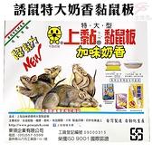 金德恩 台灣製造 誘鼠特大奶香黏鼠板1盒2片