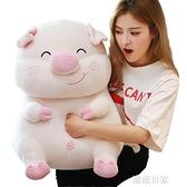 可愛豬毛絨玩具抱枕暖手公仔大布娃娃可插手玩偶超萌女孩睡覺懶人MBS『潮流世家』